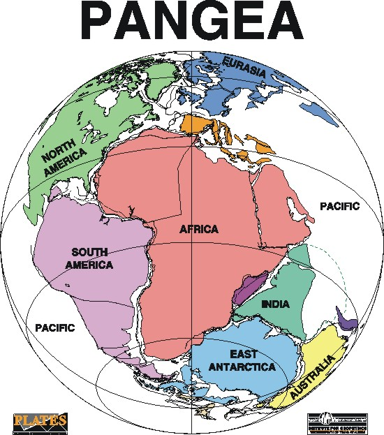 http://bprc.osu.edu/education/rr/plate_tectonics/pangea_diagram.jpg