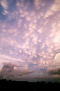 Photo of mammatus clouds by Rick